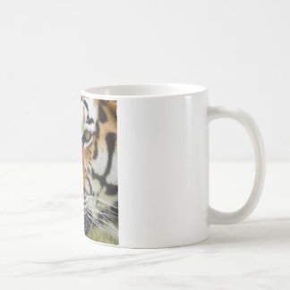 tiger-807 coffee mug