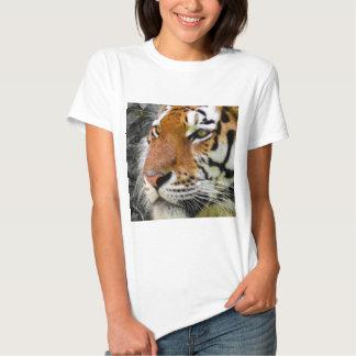tiger-807 tshirts