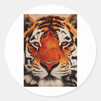Tiger ( Amur ) Classic Round Sticker