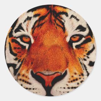 Tiger ( Amur ) Round Sticker