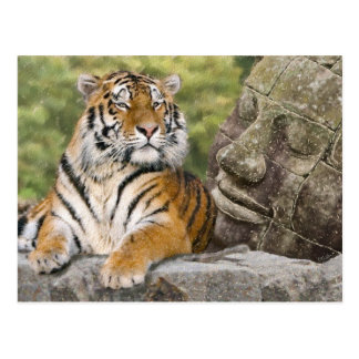 Tiger and Buddhist Temple Postcard