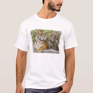 Tiger and Buddhist Temple T-Shirt