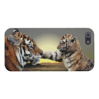 Tiger and Cub iPhone 5 Savvy Casekrys bailey amur iPhone SE/5/5s Case