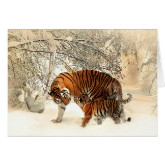Tiger and Cub, Winter Card