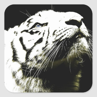 Tiger and Hope Square Sticker