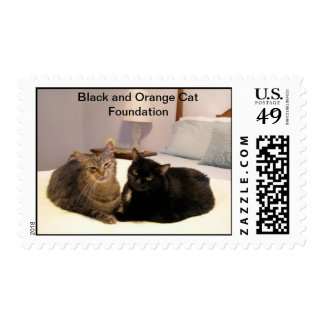 Tiger and Midnight Postage Stamps