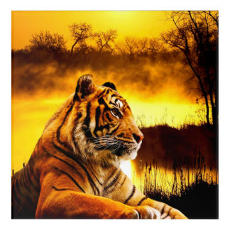 Tiger and Sunset Acrylic Wall Art