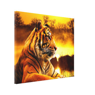 Tiger and Sunset Wrapped Canvas
