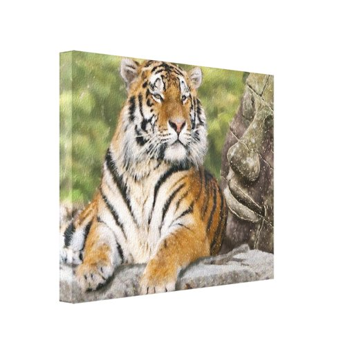 Tiger and the Buddha Canvas Print
