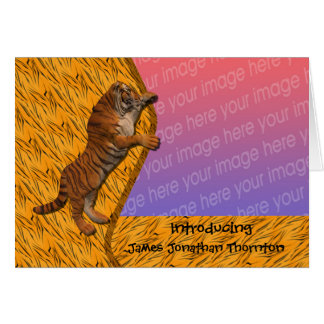 Tiger Animal Birth Announcement Photo Card