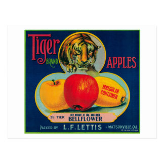 Tiger Apple Crate LabelWatsonville CA Postcards