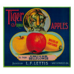 Tiger Apple Crate LabelWatsonville, CA Poster