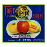 Tiger Apples Watsonville California Poster