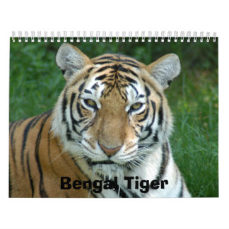 Tiger_Aroara012, Bengal Tiger Calendar