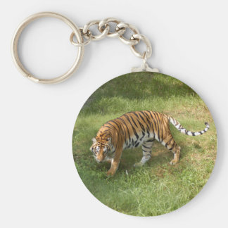 Tiger_Aroara027 Keychain