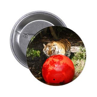 Tiger_Aroara030 Buttons