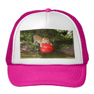 Tiger_Aroara037 Trucker Hat