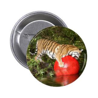 Tiger_Aroara046 Button