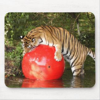 Tiger_Aroara049 Alfombrilla De Ratón
