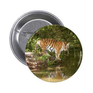 Tiger_Aroara058 Buttons
