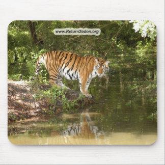 Tiger_Aroara058 copy Mouse Pad