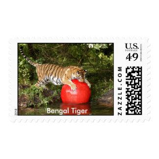 Tiger Aroara Stamp, Bengal Tiger Postage