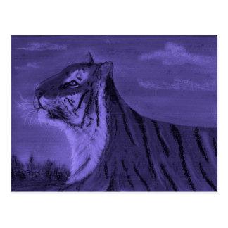 tiger at dusk postcard