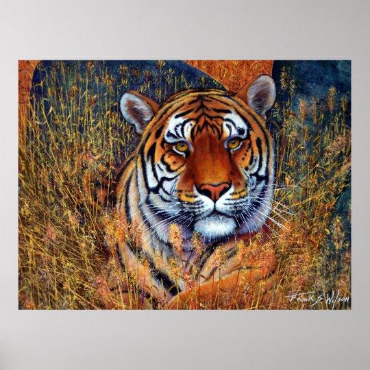 Tiger at Rest Poster