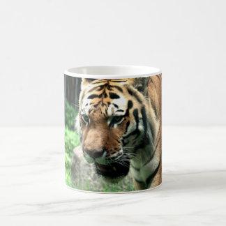 Tiger at the Bronx Zoo Mug