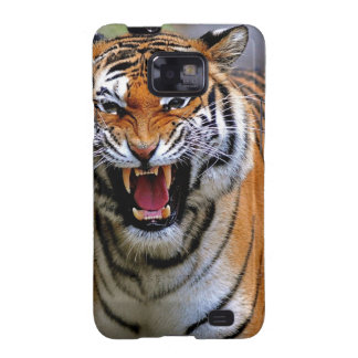 Tiger attack. galaxy SII cover