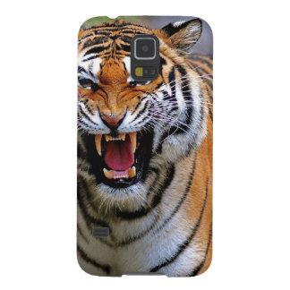 Tiger attack. galaxy nexus cover