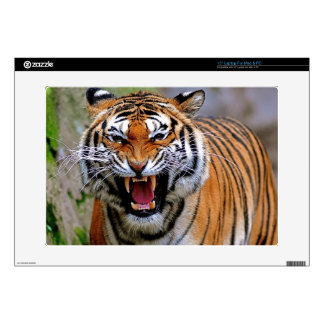 Tiger attack. laptop decal