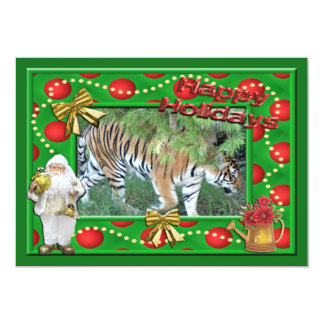 Tiger Auroara-c-143 copy Card