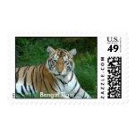 Tiger Auroara Stamp, Bengal Tiger