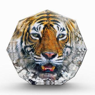 Tiger Awards