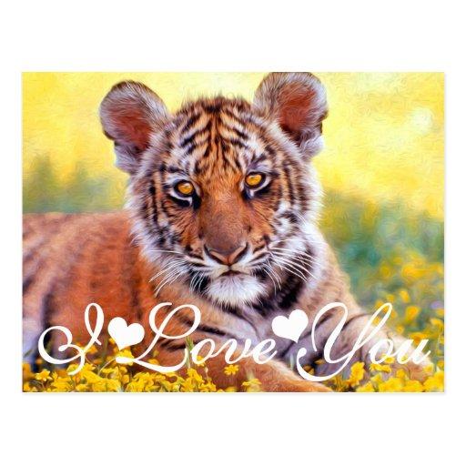 tiger baby cub i love you postcard zazzle