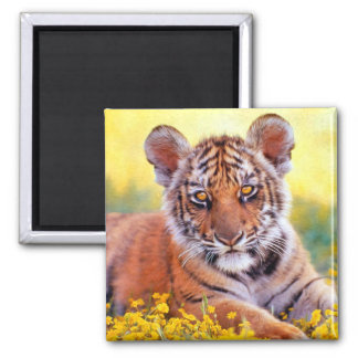 Tiger Baby Cub Refrigerator Magnets