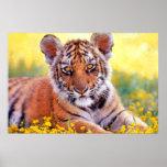 Tiger Baby Cub Print