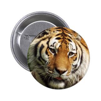 Tiger Badge Button