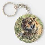 Tiger Basic Round Button Keychain