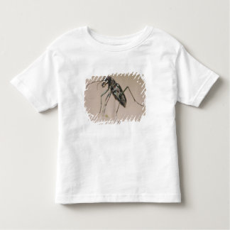 Tiger Beetle, Cicindela ocellata, adult on sand, Toddler T-shirt