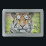 "tiger belt buckle<br><div class=""desc"">Tiger</div>"