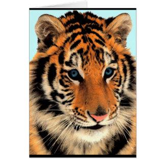 Tiger bengal blue eyed animal print card