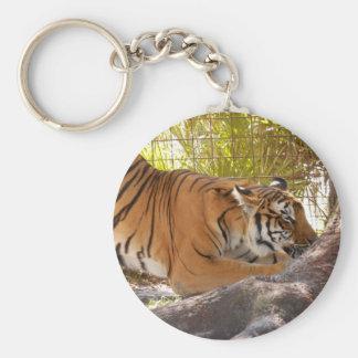 Tiger Bengali 001 Keychain