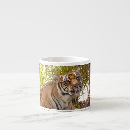 Tiger Bengali 003 Espresso Cup