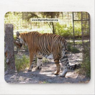 Tiger Bengali 005 copy Mouse Pad