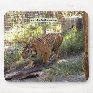 Tiger Bengali 006 copy Mouse Pad