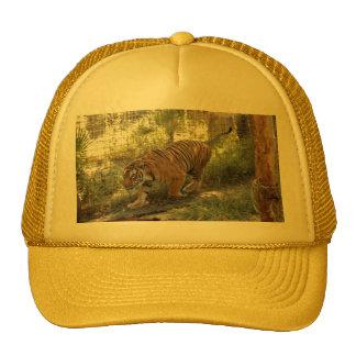 Tiger Bengali 006 Trucker Hat
