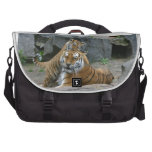 Tiger Berlin 2 Bags For Laptop