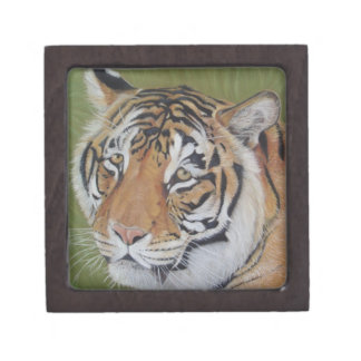 tiger big cat wildlife realist art gift box